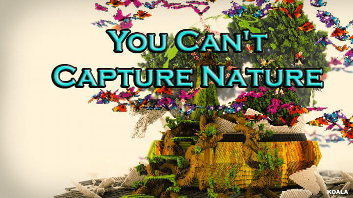 You Can't Capture Nature скриншот 1