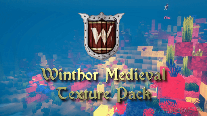 Winthor Medieval скриншот 1