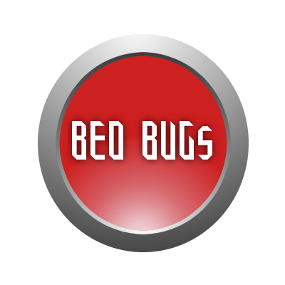Bed Bugs скриншот 1