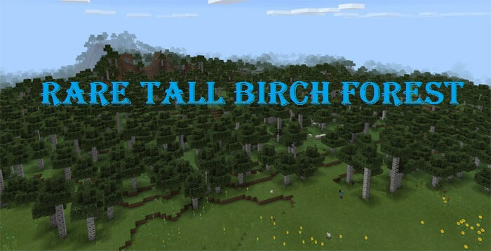 432666080: Rare Tall Birch Forest скриншот 1