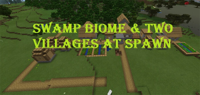 Swamp Biome & Two Villages At Spawn скриншот 1